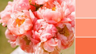 Photo of Color Love | Peach and Aqua