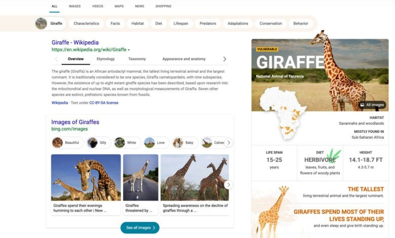 Photo of Microsoft Bing updates search results interface to make it more visually immersive