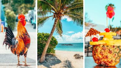 Photo of 33 Things To Do In Key West, Florida (& Massive Travel Guide)