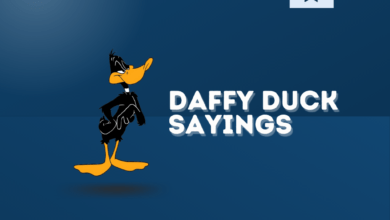 Photo of 100+ Good Daffy Duck Sayings and Quotes